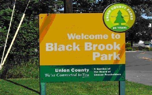 black brook park
