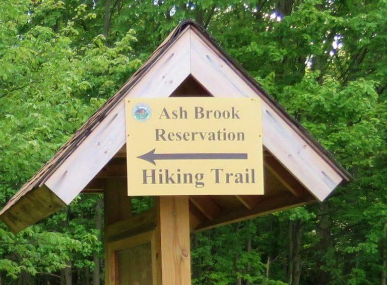 Ash Brook Reservation 768x565