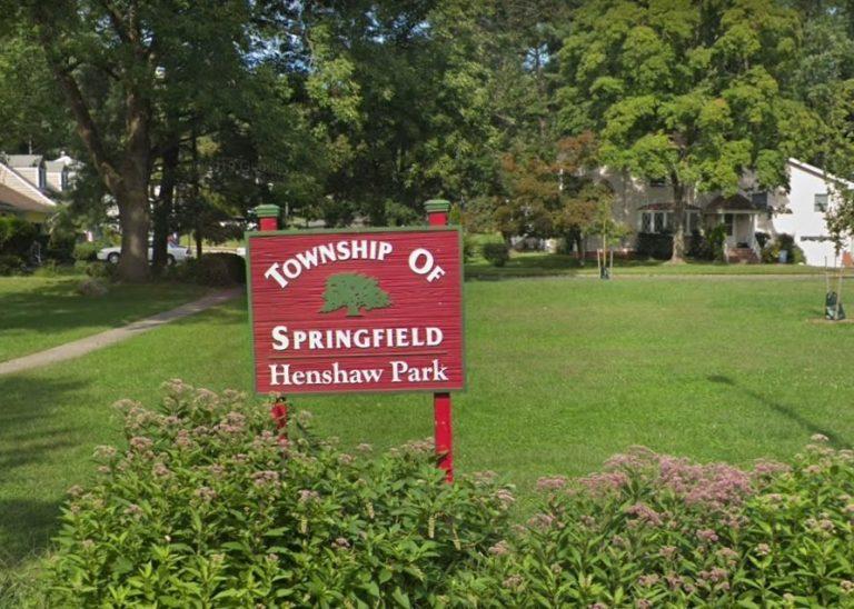 Henshaw Park 768x548