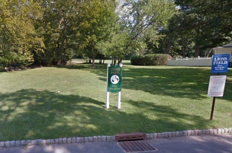 Lions Park 768x506